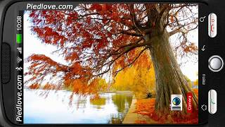 Autumn Pond Willow View HD Deluxe HD Edition 3D Live Wallpaper for Android