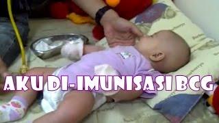 chelona baby imunisasi bcg   bayi 8 minggu