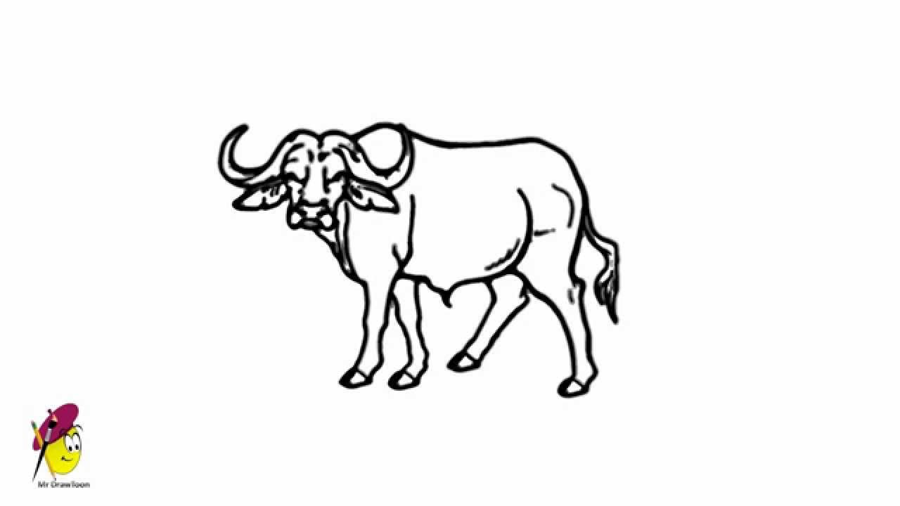 Uncategorized How Do You Draw A Buffalo buffalo easy drawing how to draw a youtube