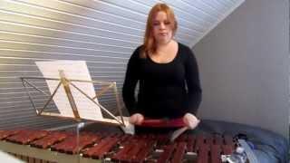 Birthday Tribute to Daniela - Hungarian Dance no. 5 (J. Brahms) marimba solo