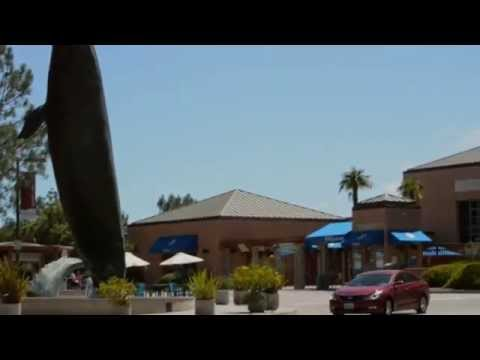 San Diego Community Profile: La Jolla Village