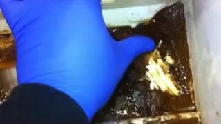 Почему течет вода в холодильнике(, 2015-01-12T18:48:26.000Z)