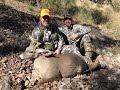 Coues Deer Hunting with Craig Knowles