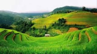 China Country Music   情歌给草原  1