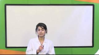 Hukukun Temel Kavramları (Soru Çözümleri)
