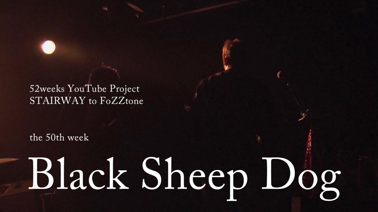 【歌詞つき】Black Sheep Dog(live ver) / FoZZtone [official] - YouTube