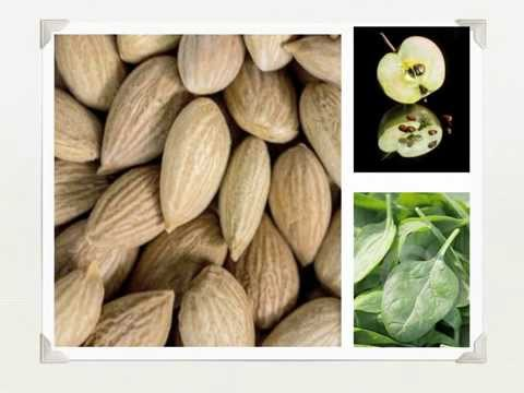 Vitamin B17 Laetrile - Alternative Cancer Prevention Supplement