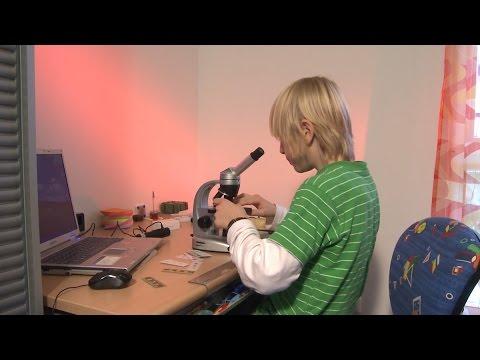 Clixkids: mein blick durchs mikroskop youtube