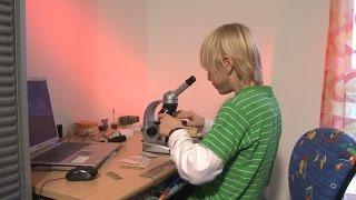 Clixkids: Mein Blick durchs Mikroskop