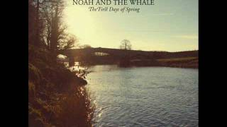 Watch Noah  The Whale The Line video