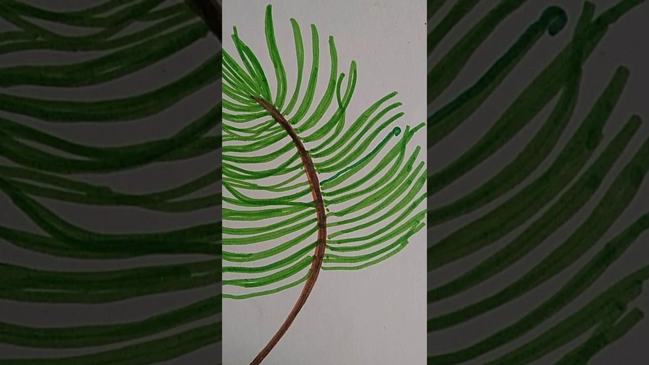 Cara gambar Motif Daun kelapa simple dengan spidol - YouTube