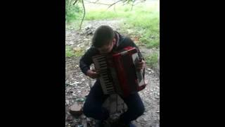 Мелодия телефонного звонка с фильма Бумер на аккордеоне