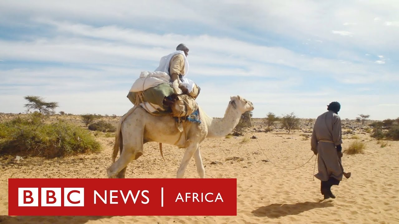 Desert Empires - History Of Africa with Zeinab Badawi [Episode 10]