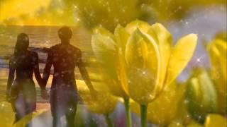 I Was Born To Love You - Eric Carmen (with lyrics)