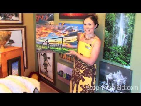 Gallery Director Rachel from Randy Jay Braun Gallery Testimony
