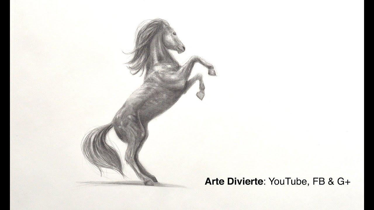 Cómo dibujar un caballo relinchando a lápiz - YouTube
