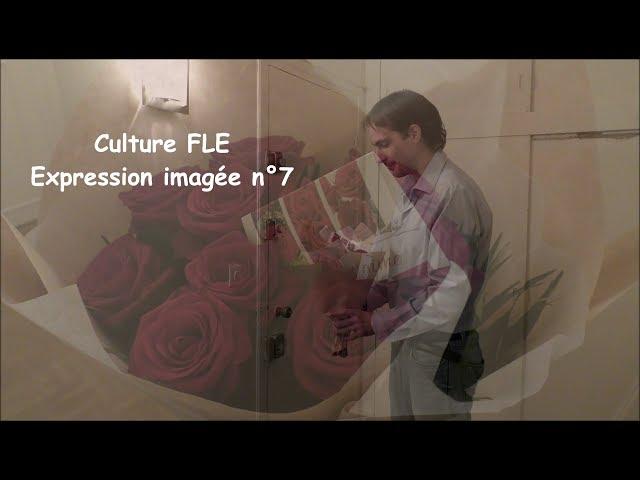【Culture FLE】Expression imagée n°7