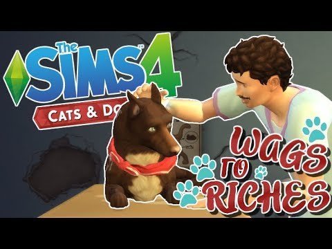 Open Day! - The Sims 4: Cats and Dogs | Wags To Riches