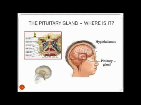 Pituitary Centers of Excellence 1 24 17