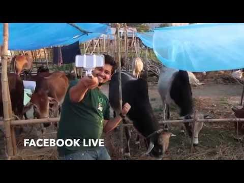 Kurbanir Goru| Facebook Live