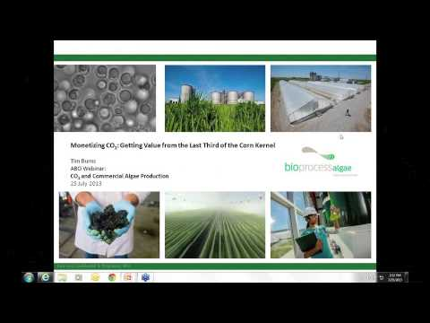 CO2 and Commercial Algae Production