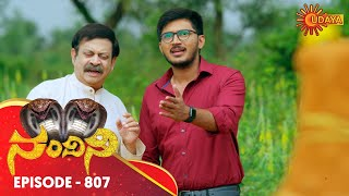 Nandini - Episode 807 | 29th Nov 19 | Udaya TV Serial | Kannada Serial