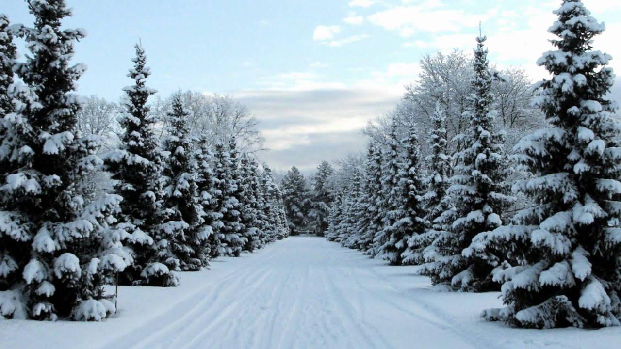 картинки зимние красивые