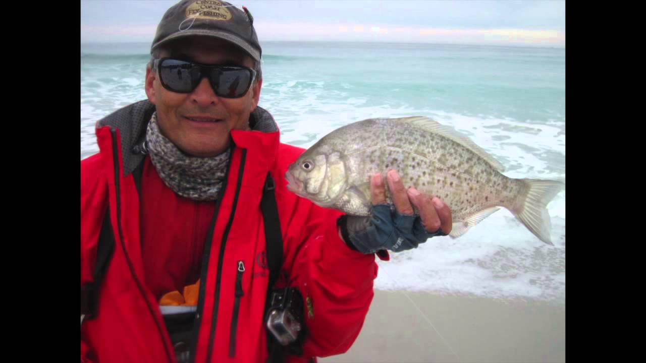 Surf perch fly fishing carmel beach california youtube for Best fishing in california