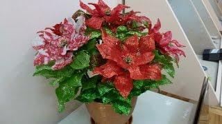 Пуансеттия -  рождественская звезда из бисера