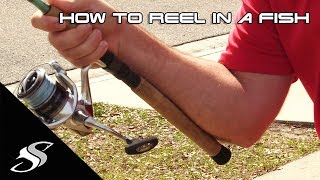 How to Reel iฑ a Fish for Beginners