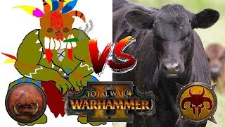 "Greenskins vs Beastmen | DA ""GREEN"" PROPHET - Total War Warhammer 2 Tournament Match"