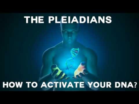 The Pleiadians on