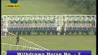 Best horse racing in india