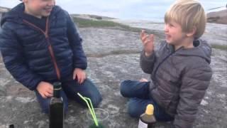 Densitet och vätskor - bNosy Enkla Experiment för Barn 10