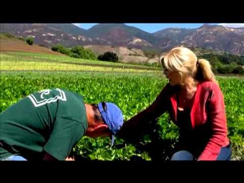 Rebecca Brand Visits Organic Farm Amapola Ranch