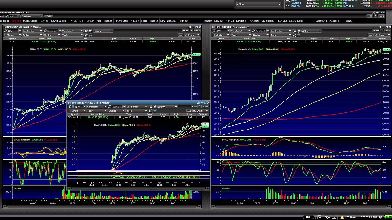 Yin yang forex trading system download dubai