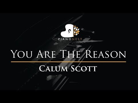 Calum Scott - You Are The Reason - Piano Karaoke / Sing Along / Cover with Lyrics