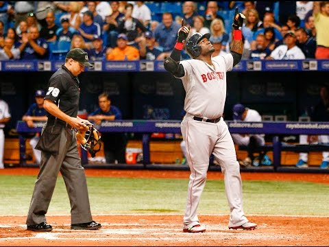 David Ortiz Highlights 2016