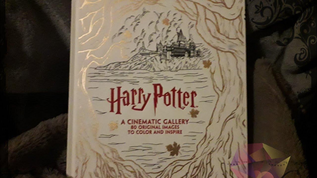 Livre Harry Potter Le Livre Des Enluminures 80 Scenes Cultes