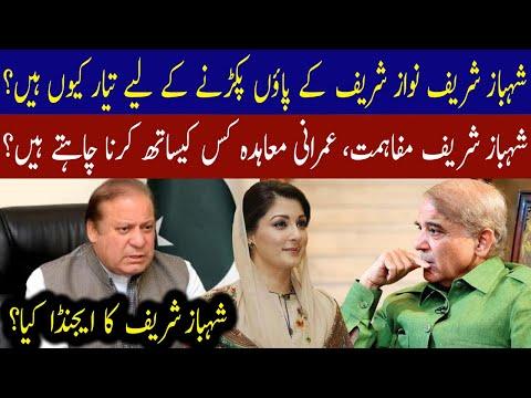 To whom Shahbaz Sharif wants to reconciliation? Establishment or Govt   01 June 2021   92NewsHD thumbnail