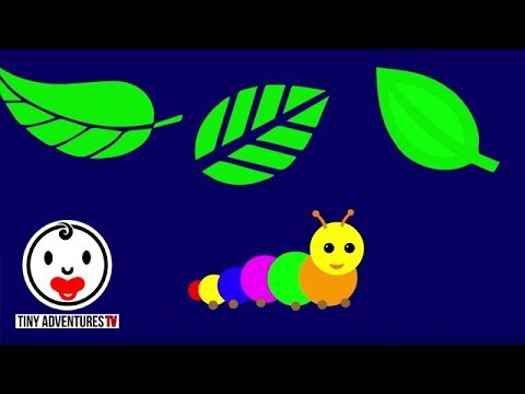Baby Sensory - Little Caterpillar (Infant Visual Stimulation)