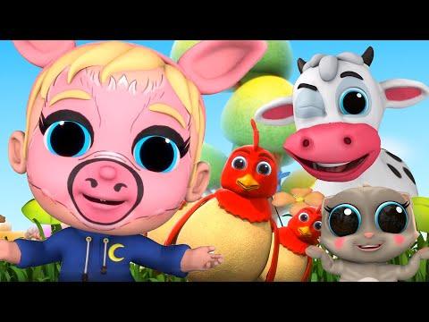 Baby Joy Joy's Animal Friends | Compilation | Baby Joy Joy On Clap Clap Baby
