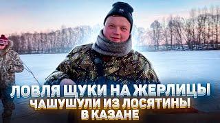 ЛОВЛЯ ЩУКИ НА ЖЕРЛИЦЫ Чашушули из ЛОСЯТИНЫ в казане Клёв белой рыбы на мормышку Зимняя рыбалка