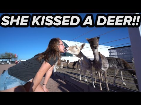 SHE KISSED A DEER !! (Just a long video of us petting cute animals)