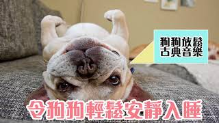 【music for dog 】狗狗放鬆睡眠古典音樂