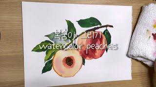 복숭아 수채화 그리기 Peaches watercolor…