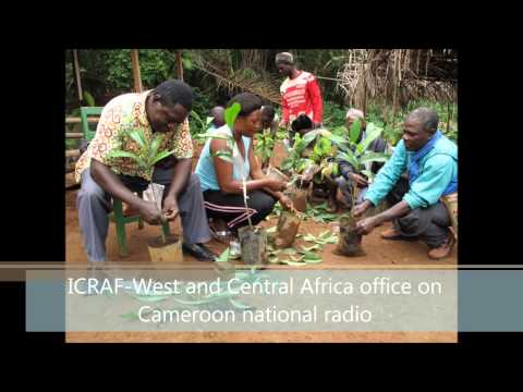 ICRAF West and Central Africa.mp4