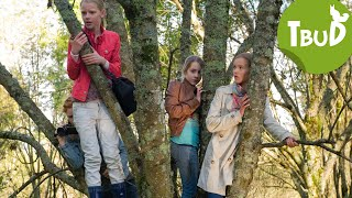 Wie die Wildsau (Folge 23)   Tiere bis unters Dach   SWR Kindernetz