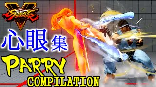 [スト5] リュウ・心眼集 (ときど & ウメハラ) [Ryu Parry Compilation] thumbnail