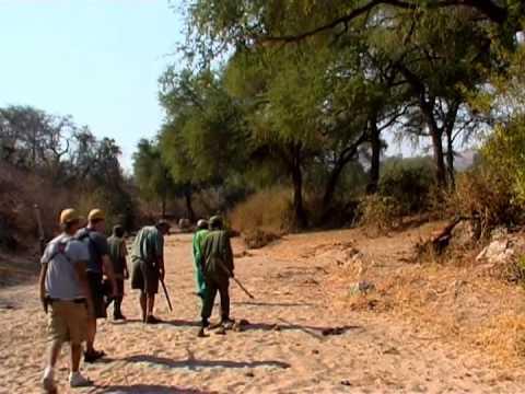Zimbabwe African Hunting Safari 2005